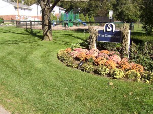 Apartment Landscape Maintenance in Southeast Massachusetts - Residential Lawn, Tree & Shrub Care
