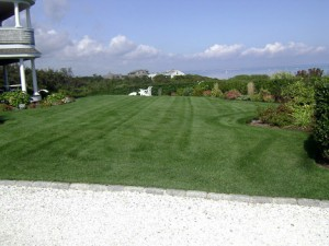 Beautiful Lawns - Residential Lawn, Tree & Shrub Care
