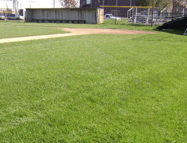 Athletic Field Landscape Services - Cape Cod Massachusetts